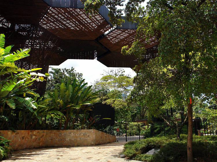 Joaquin Antonio Uribe Botanical Garden   Medellín, Colombia