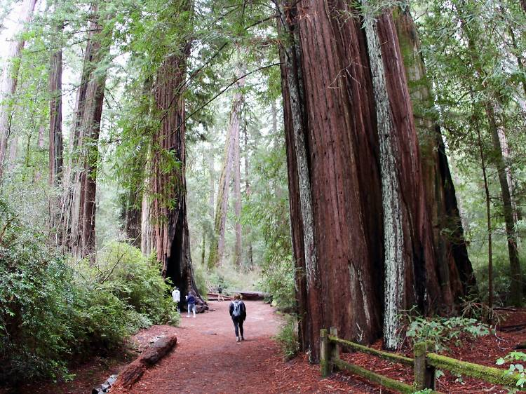 The 15 best California State Parks