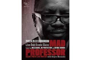 MAD PROFESSOR Live Dub Remix Show