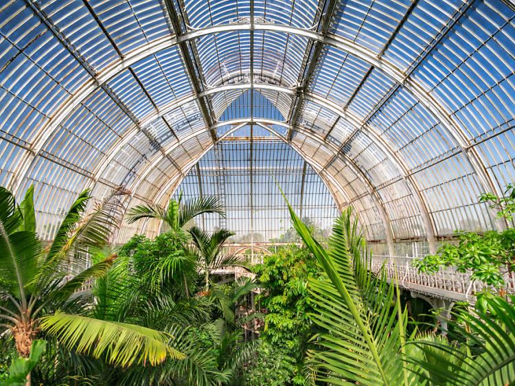 Kew Gardens   London, England