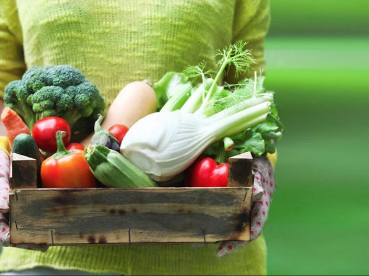 As compras de supermercado vão até sua casa: as melhores entregas ao domicílio