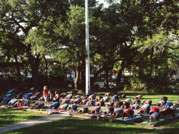 Peacock Park Yoga