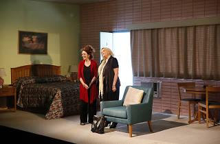 'Dana H.' at Goodman Theatre