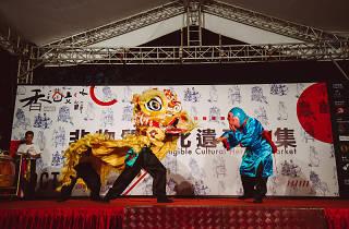 Hong Kong Culture Festival