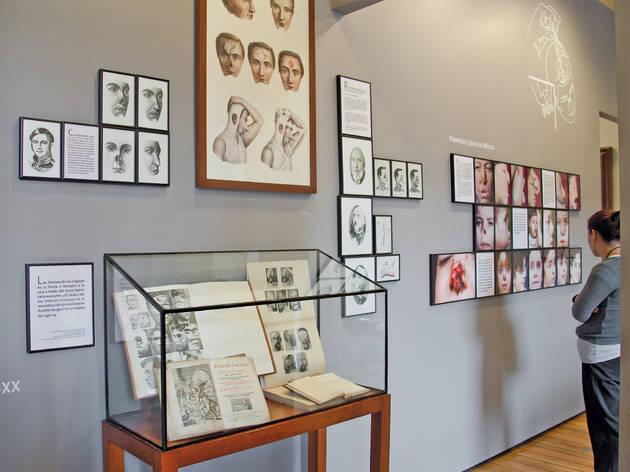 Museo de la Medicina Mexicana (Foto: Alejandra Carbajal)