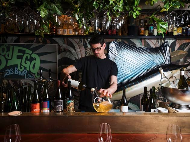 Man behind bar at Bodega Surry Hills