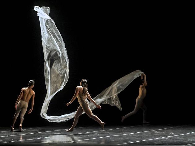Tepeyollotl Dance Project