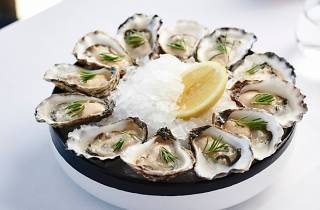 Stokebar oysters