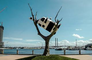 John Kelly - Cow Up A Tree (2000)