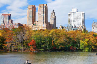 Gorgeous fall foliage in NYC is on its way—and this map tells you when it will arrive
