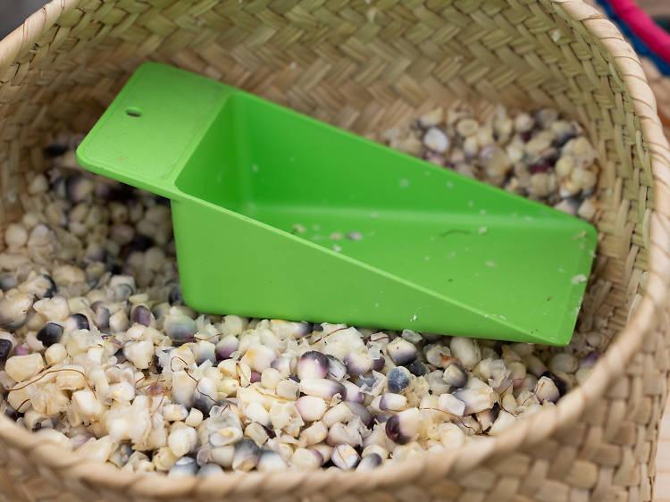 Feria del Maíz en el Mercado Alternativo de Tlalpan