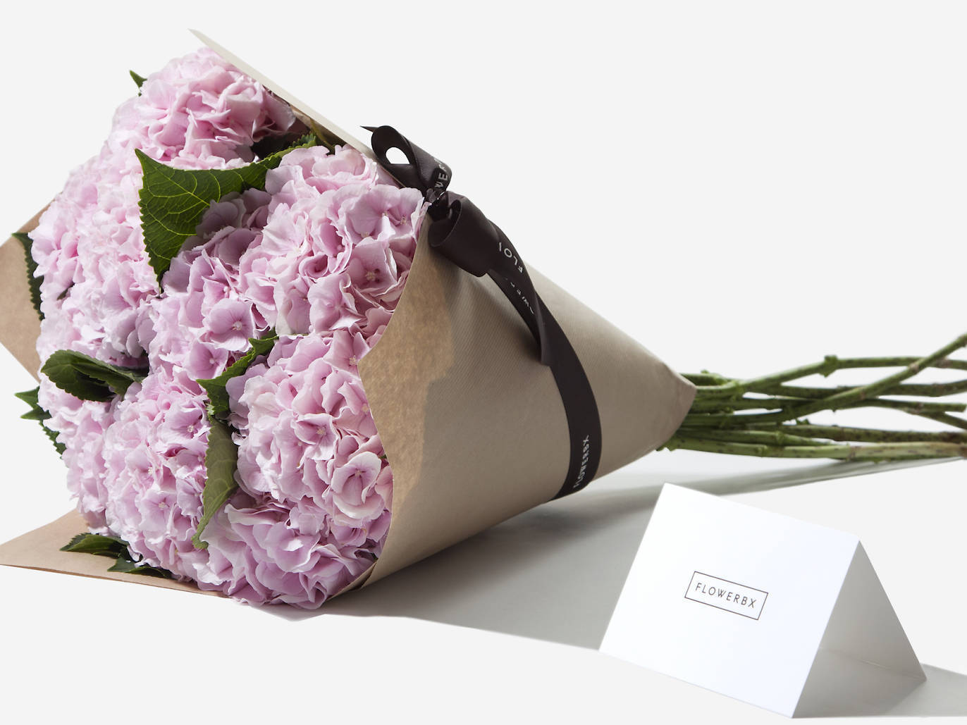 9 Blooming Brilliant Flower Delivery Services In Edinburgh