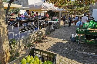Mercado Biológico do Parque da Cidade