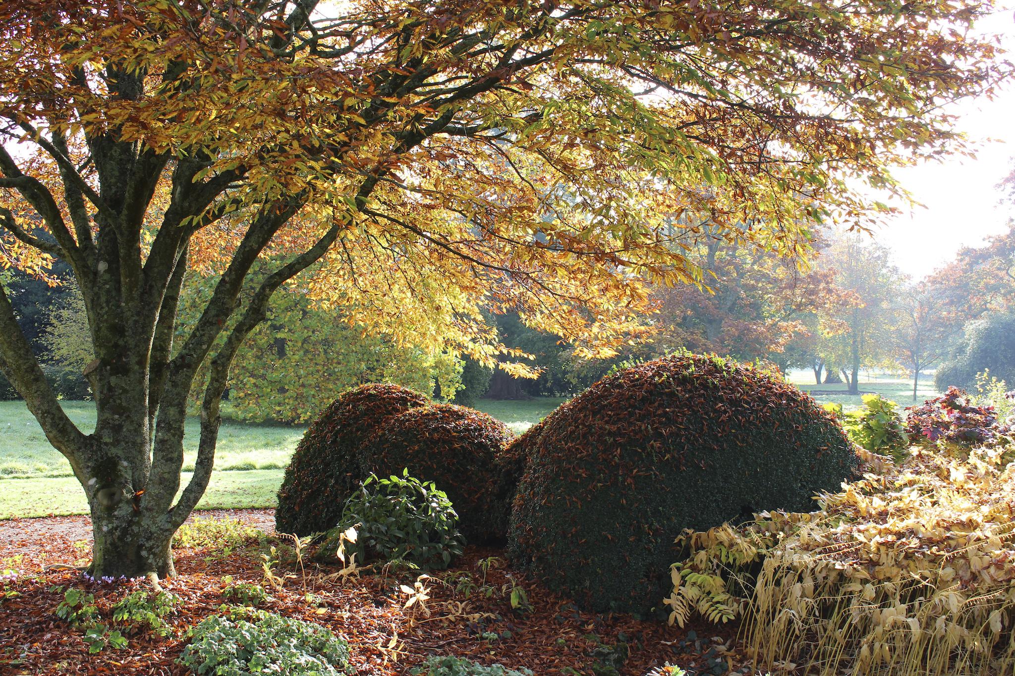West Dean Gardens, Sussex