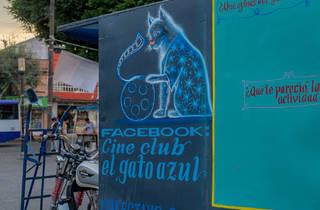 Cine Club El Gato Azul (Foto: Noé Toledo)