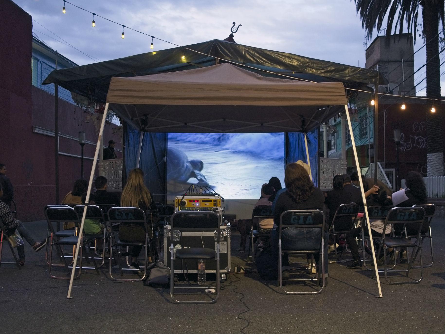 Cine Club El Gato Azu, cineclub al sur de la CDMX