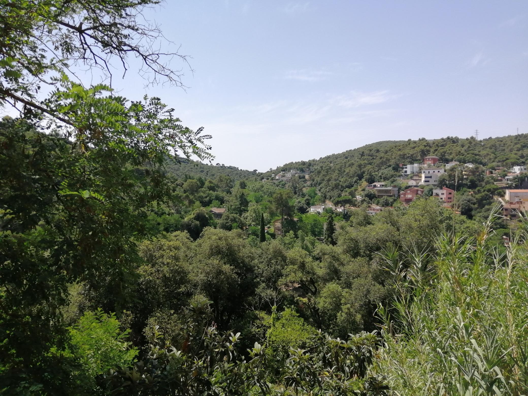 La Floresta