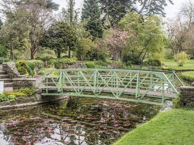 A bridge and lily pads at the National Botanic Gardens in Dublin