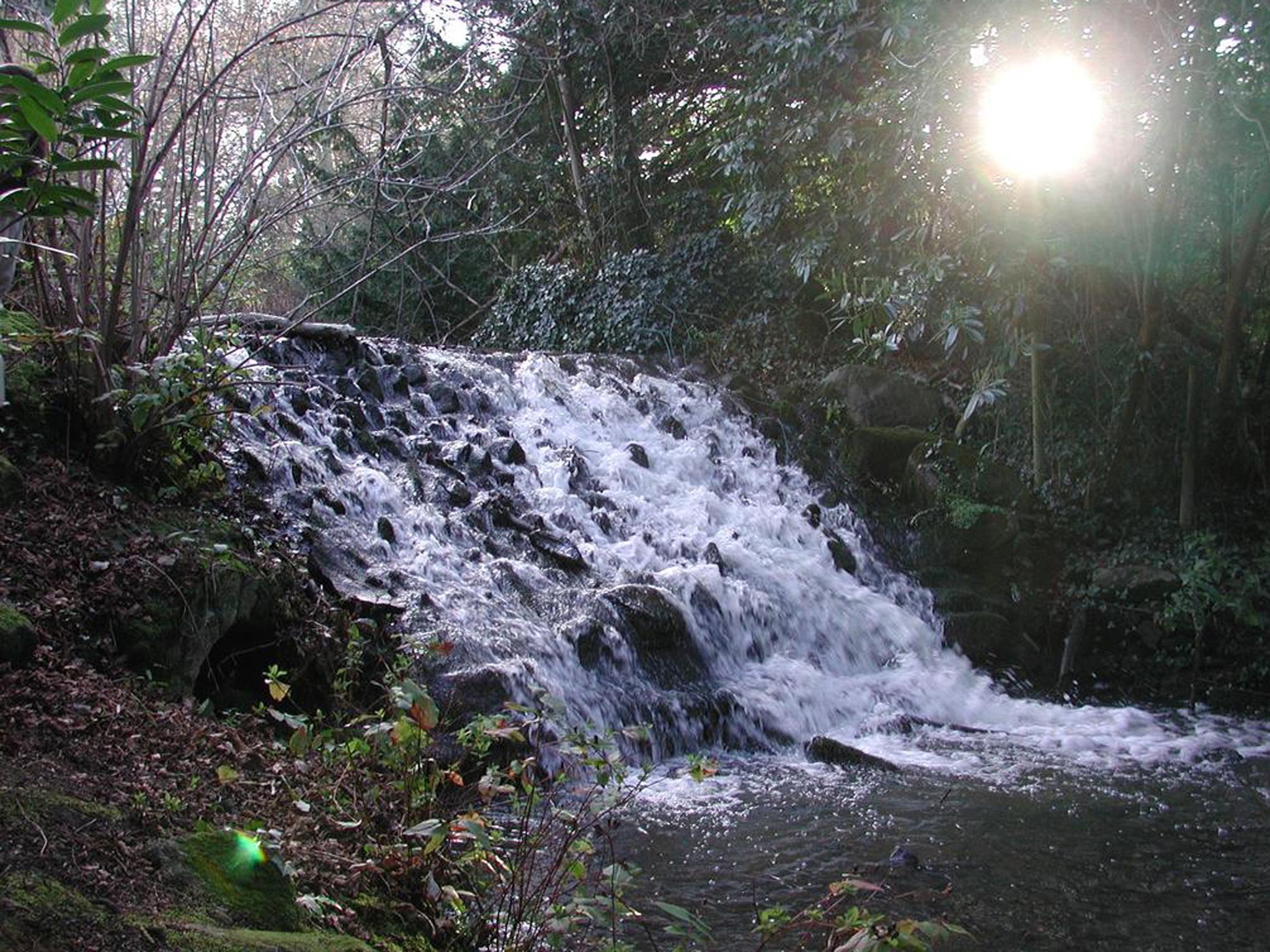 A waterfall in Marlay Park in Dublin