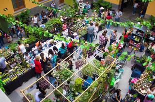 Festival de Jardín (Foto: Cortesía Festival de Jardín)