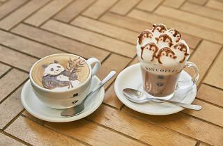 Hatcoffee