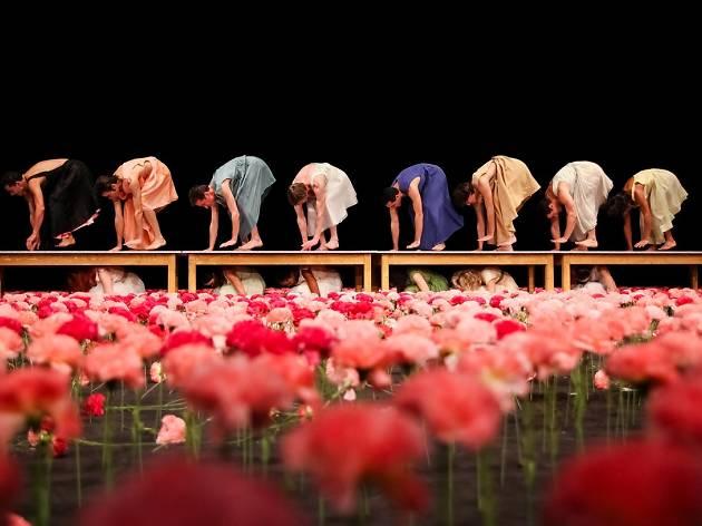 Pina Bausch: Carnations