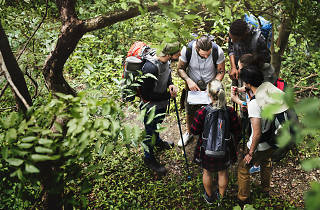 Group of people in the bush looking at a map