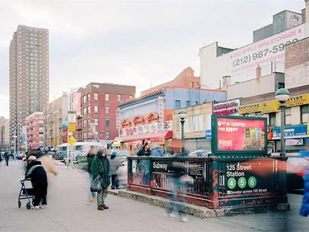 Ciro Frank Schiappa. New York Seernade
