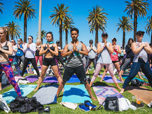 People doing yoga on the grass with palm trees in the background at the Wanderlust 108 Festival.