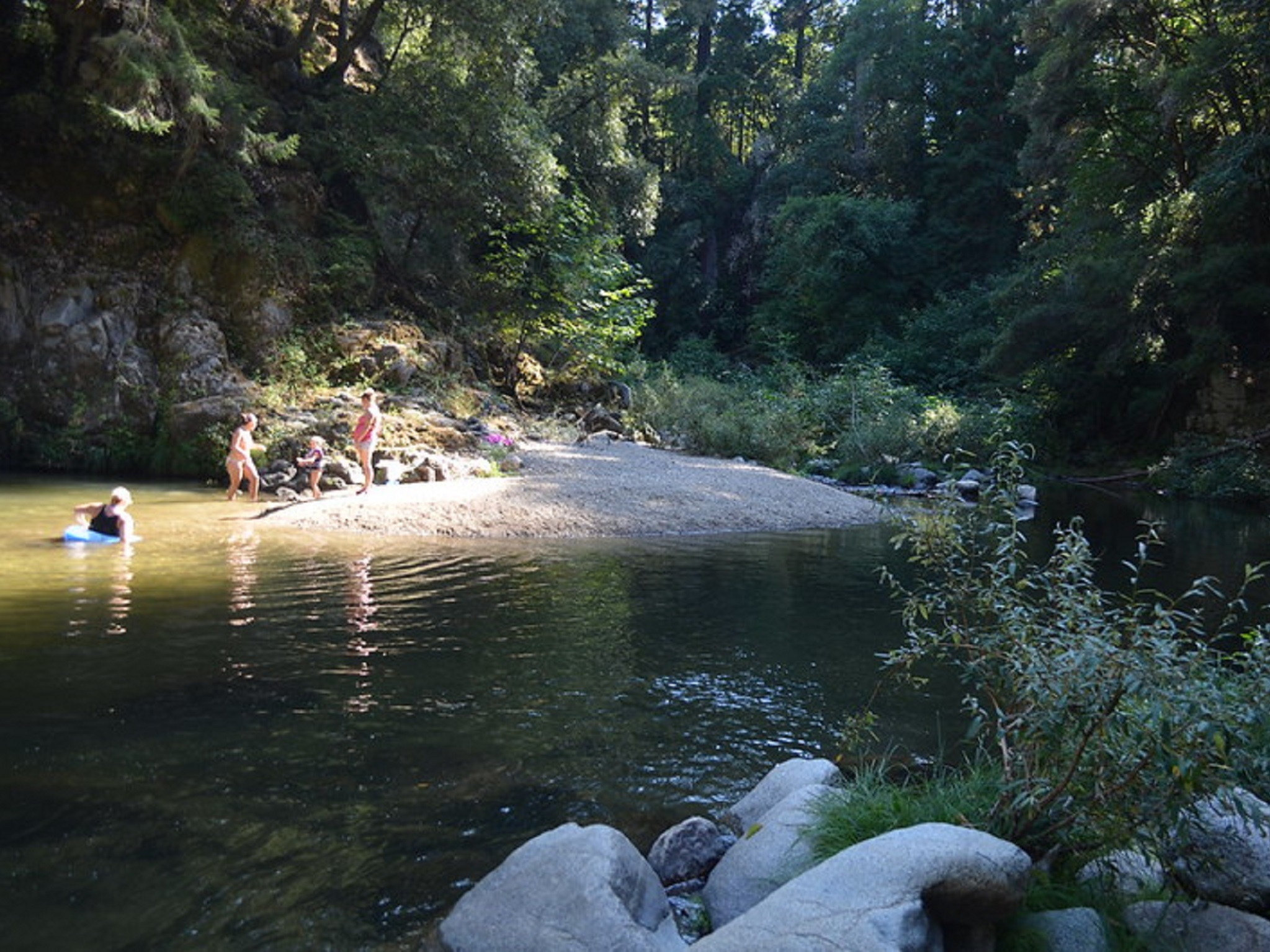 People floating in a river surrounded by redwoods