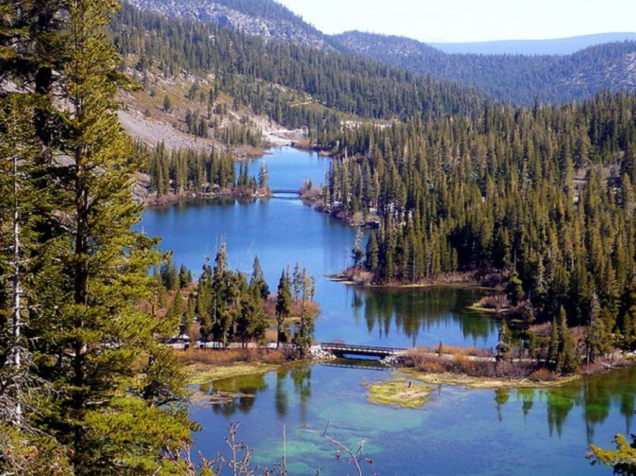 Alpine lakes surrounded by trees