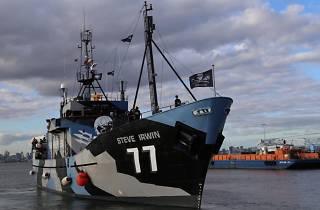 The Steve Irwin the boat