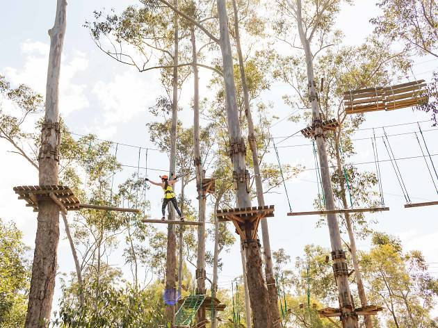 Girl climbing across high ropes course in trees
