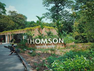 Hike through ruins and spot endangered monkeys at Thomson Nature Park