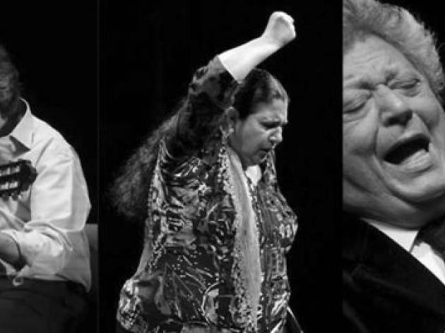 II Festival Circulo Flamenco