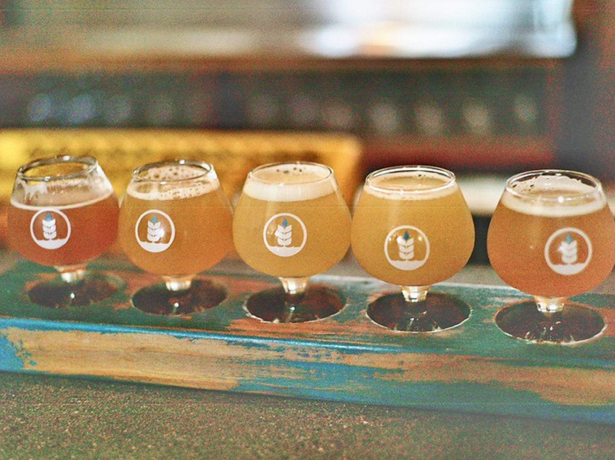 Five tasters of beer on a blue board