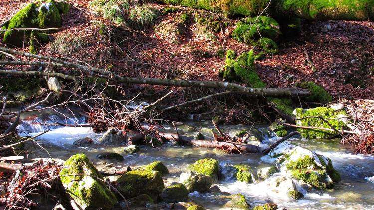 Park prirode Učka