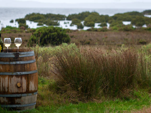 You can now take a food and wine tour on French Island