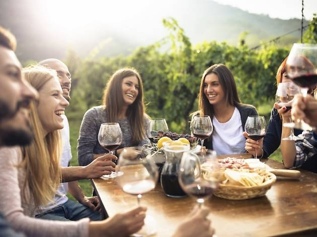friends toasting with red wine