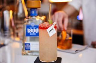 1800 Tequila House Swap
