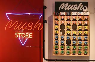 lamma island mush store