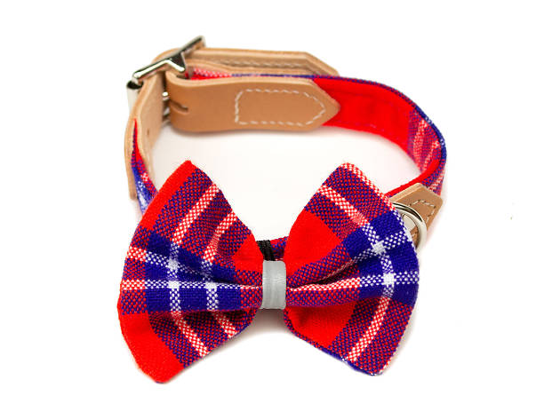Shuka red dog bow tie