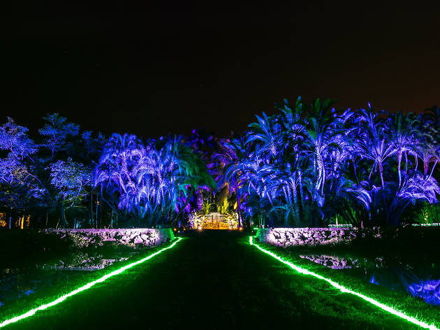 Nightgarden Things To Do In Miami