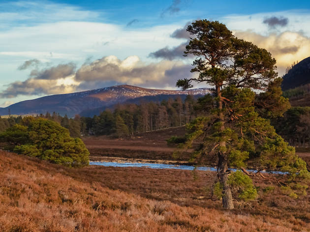 13 things to do in Royal Deeside