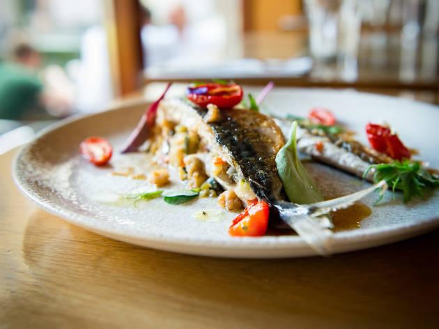 A fish main at Enoteca delle Langhe restaurant in Dublin