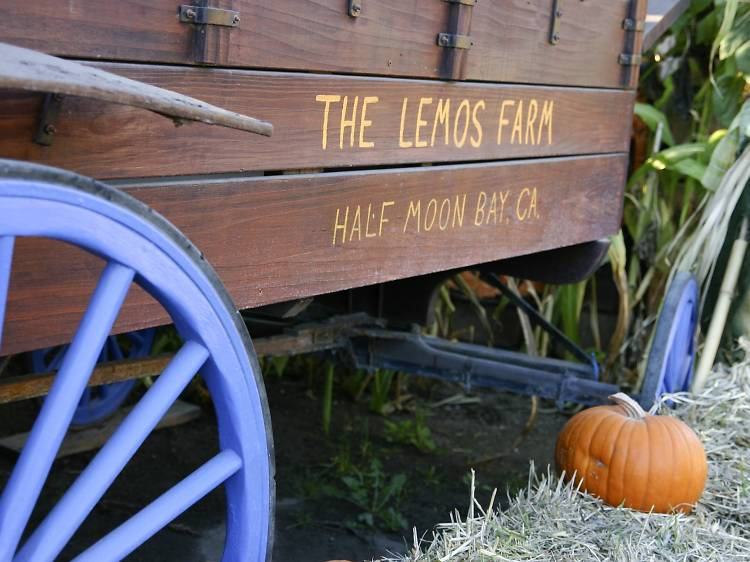 Lemos Farm