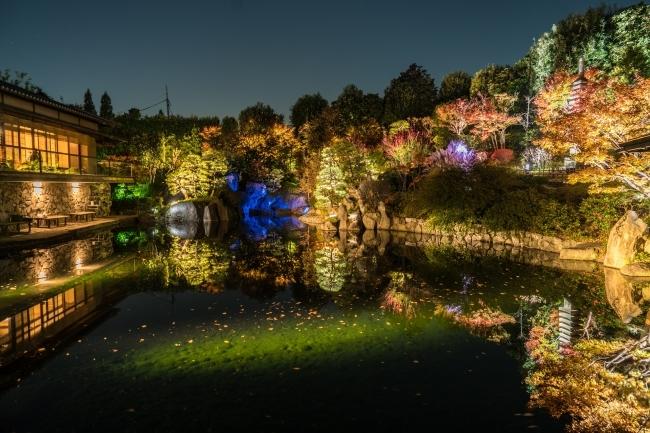 秋の庭園ライトアップ