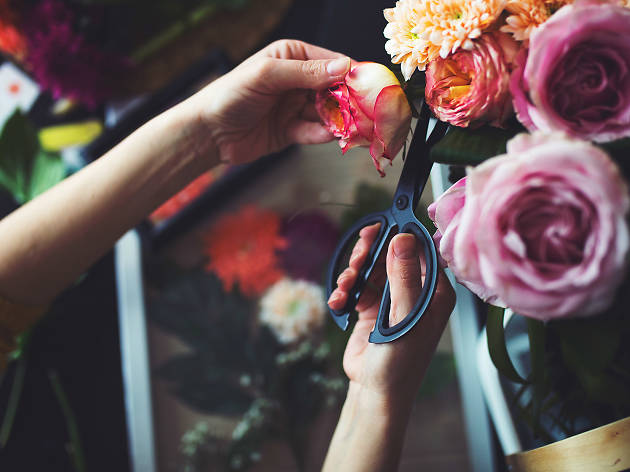 Pair of hands trimming a rose