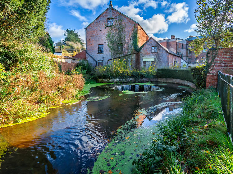 10 things to do in Ottery St Mary