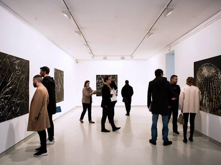 Admirar as novas exposições das galerias em Miguel Bombarda